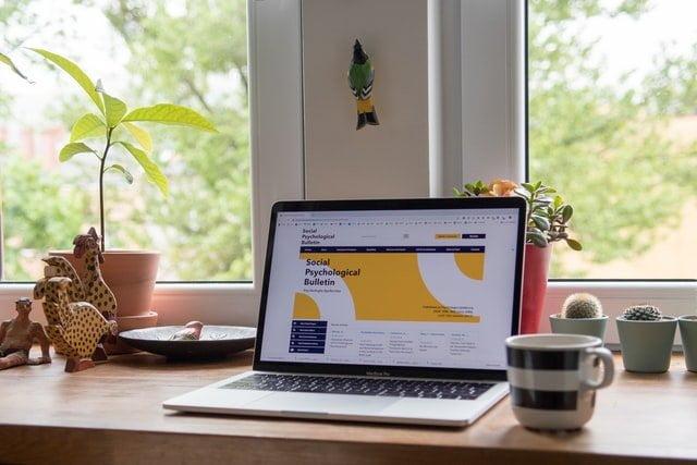 SEO最成功的文章剖析 - 北美SEO公司